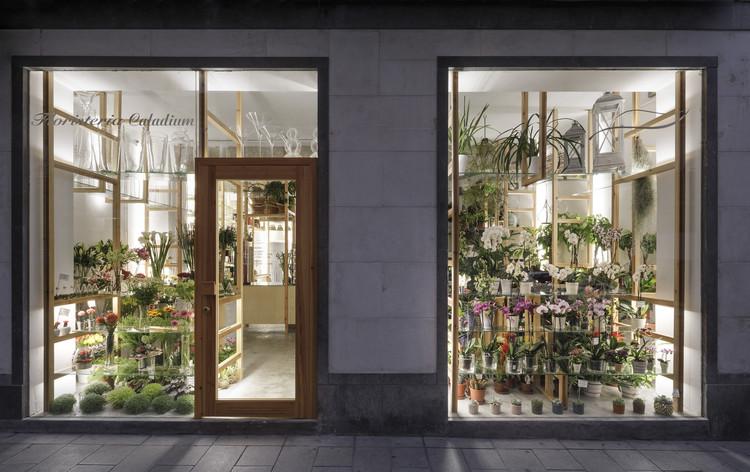 Orquídeas y Escaleras / SERRANO+BAQUERO Arquitectos, © Fernando Alda