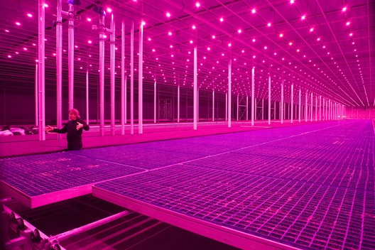 Countryside: Future of the World, a collaboration between Guggenheim and AMO / Rem Koolhaas examines radical changes transforming the non-urban landscape opens Fall 2019. Photo: Pieternel van Velden (Koppert Cress, The Netherlands 2011). Image Courtesy of Guggenheim