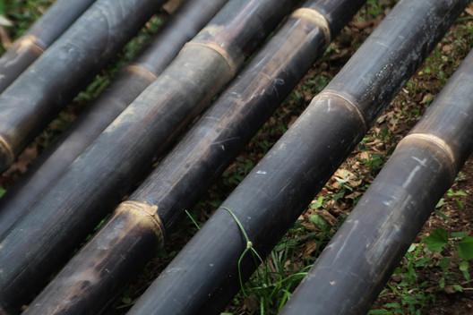 Alerta de material notable: el Bambú Negro