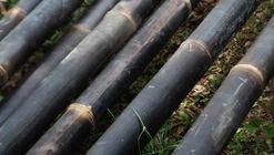 Surprising Material Alert: The Black Bamboo