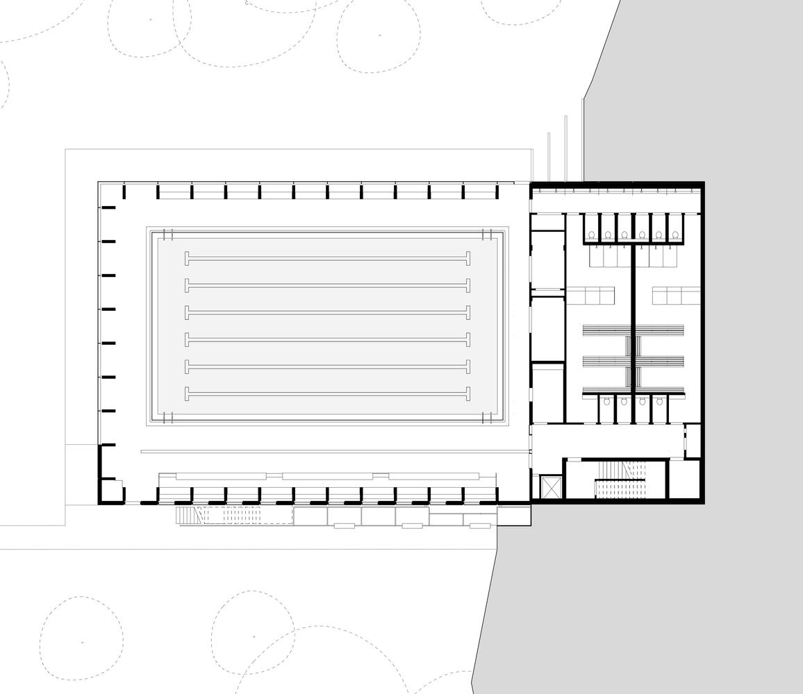 Gallery of Freemen\'s School Swimming Pool / Hawkins\\Brown - 12
