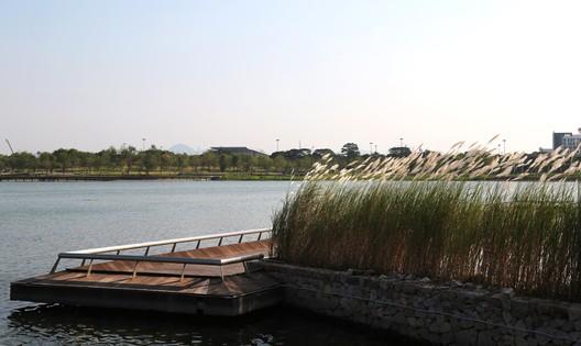 Reeds soften straight boundaries. Image © Jie Zhu, Mucong Li
