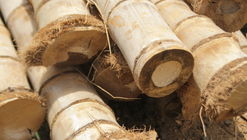 Will Bamboo Ever Achieve Widespread Use in the Construction Industry?