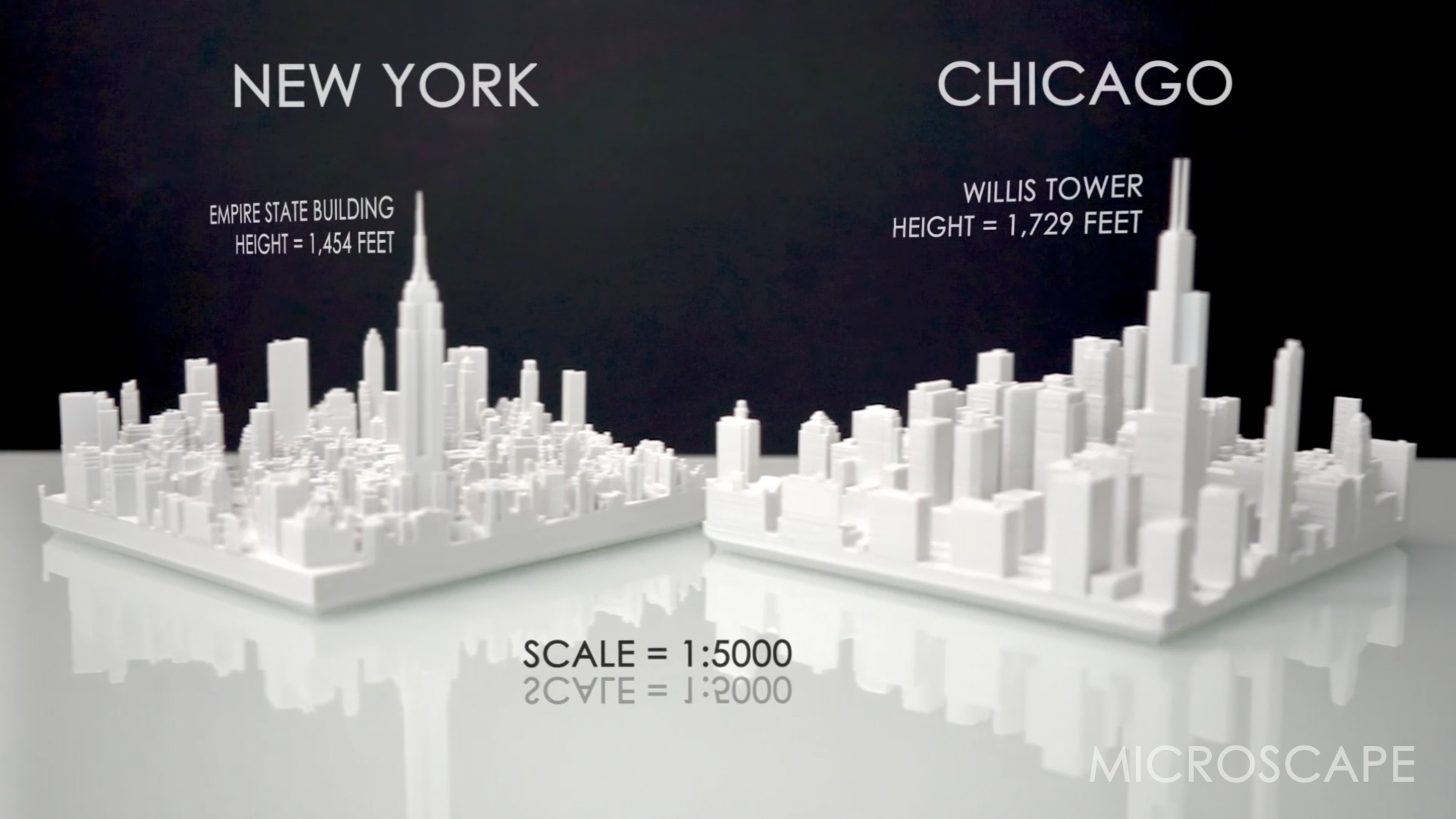 chicago vs new york size