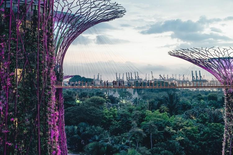 """Algoritmo encontra a cidade mais verde do mundo, Projeto Gardens by the Bay em Singapura. Fotografia em domínio público disponível no <a href=""""https://visualhunt.com/re/a5a68d"""">Visualhunt</a>"""