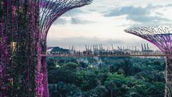 Treepedia, el algoritmo que asegura encontrar la ciudad más verde del mundo