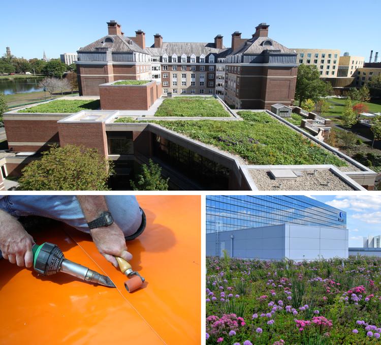 Os telhados verdes podem ajudar a proteger os telhados dos efeitos nocivos dos raios UV e oferecer uma característica bela e estética para os ocupantes. Imagem Cortesia de Sika