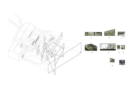 Analysis of Views Facing the Camphor Tree. Image Courtesy of Naturalbuild