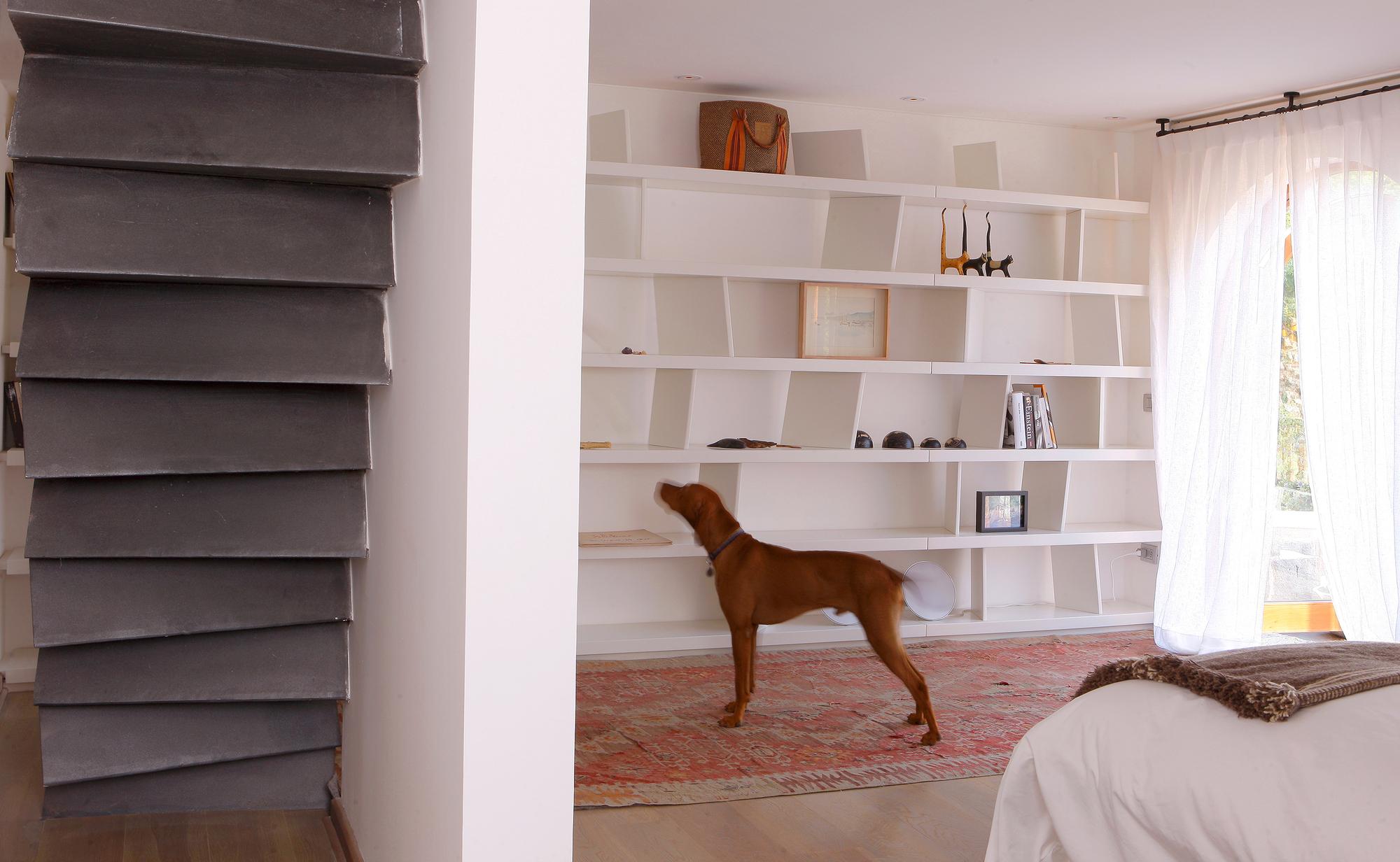 Caz Zegers Oficina Plataforma Arquitectura # Muebles Dentales Selecto