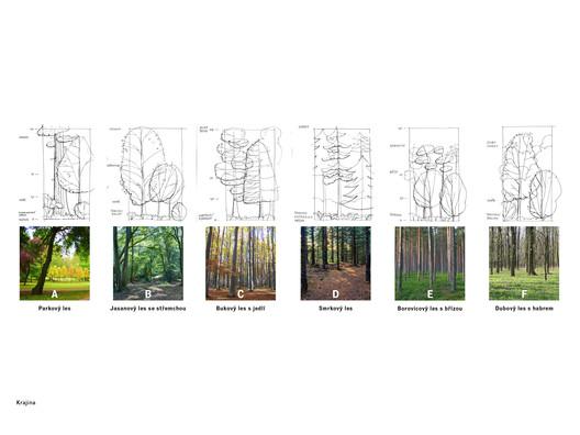 Tree Types. Image Courtesy of Chybik + Kristof