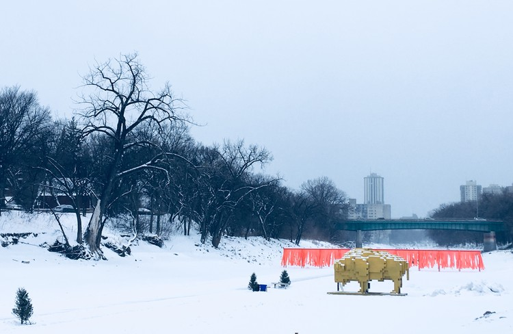 Mexicanos diseñan escultura que habita las calles de Canadá: Golden Bison por David Alberto Arroyo Tafolla, © Luca Roncoroni