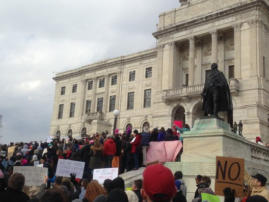 A rally on the grounds of the Rhode Island State House, January 2017. Image © Ben Willis