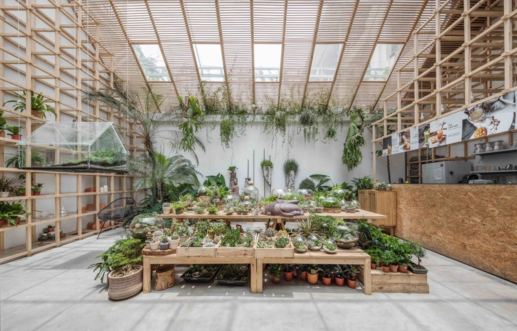 Tropical Forest / Tayone Design Studio, © Nguyen Thai Thach