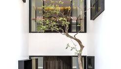 HP6 House / AHL architects