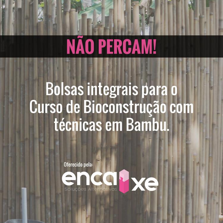 Inscrições abertas: Concorra à bolsa integral para curso de bambu em São Paulo, Excelente oportunidade para aprender sobre construção com bambu! Crédito Imagem: Brianna Bussinger
