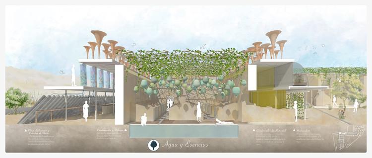 Ruin Experience: un diálogo entre arquitectura y naturaleza a través de los sentidos, Cortesía de Sergio Navarro García
