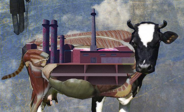 El collage como metodología para la identificación de valores patrimoniales frente a las transformaciones urbanas, Cortesía de Camila Mancilla Vera