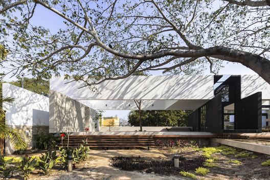Casa del Árbol / AS Arquitectura