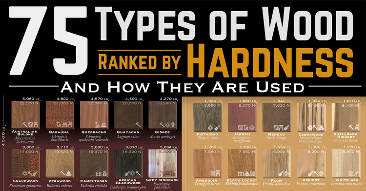 75 Types of Wood Ranked by Hardness, Courtesy of www.alansfactoryoutlet.com