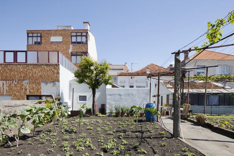 Casa na Ilha - Contexto ® / Garden House, © Tiago Casanova