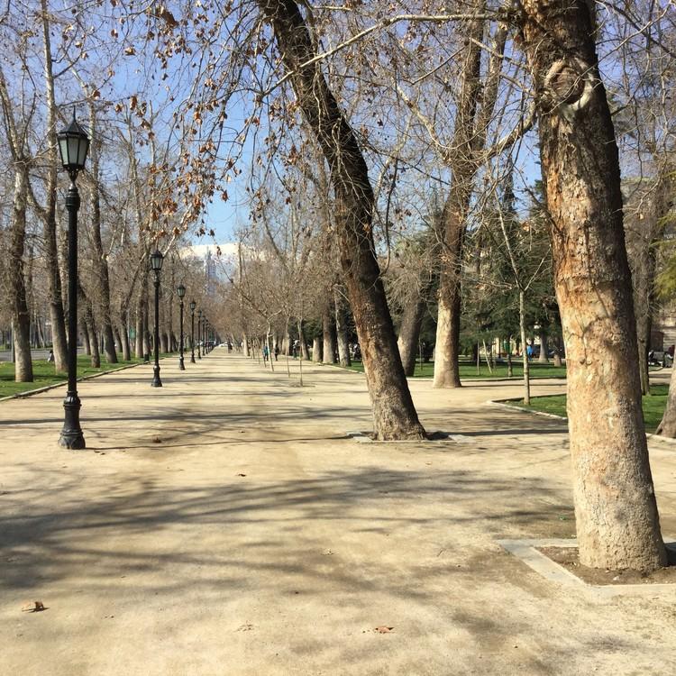 ¿Por qué es importante el Parque Forestal de Santiago de Chile?, Paseo de Plátanos Orientales. Image Cortesía de Cynthia Marimán Ramos - Roberto Astete