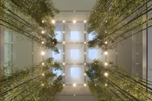 Apple Store, Macau, Sands Cotai. Looking up into the light lantern framed with densely planted Bamboo. Image Courtesy of Nigel Young, Foster + Partners