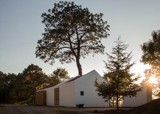 Casa alrededor de un pino / Espacio EMA. Image © Patricia Hernández