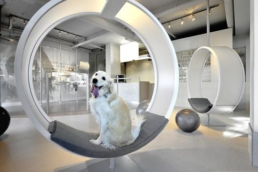 Unleashed Dog Spa / Square One Interiors. Image © Ihor Pona