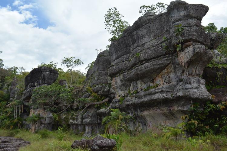 El parque colombiano Serranía de Chiribiquete, nuevo Patrimonio de la Humanidad  , Serrania La Lindosa, investigaciones, Archdaily en Guaviare Colombia. Image © Yamid Rivera