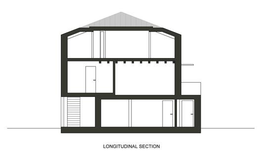Longitudinal Section