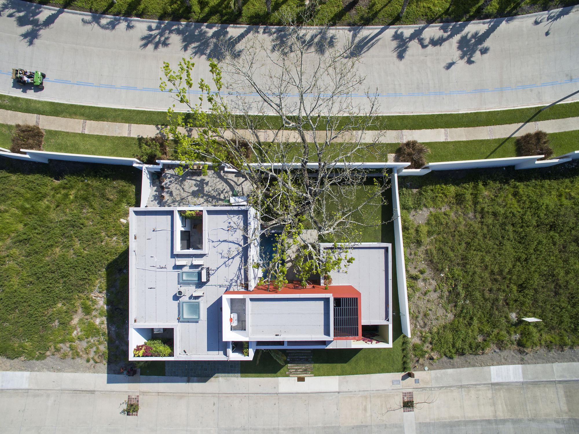 Casa del Arbol / OBRA BLANCA
