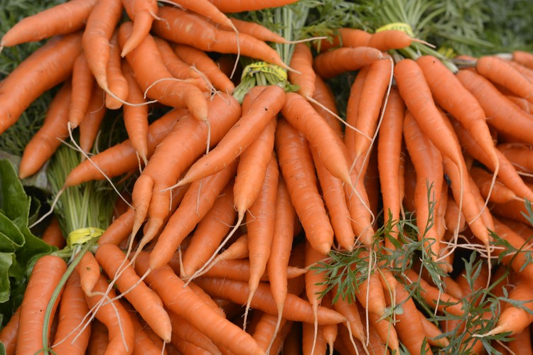 Could Carrots Make Concrete Stronger and Greener?, via flickr user 29487672@N07 licenced under CC BY 2.0