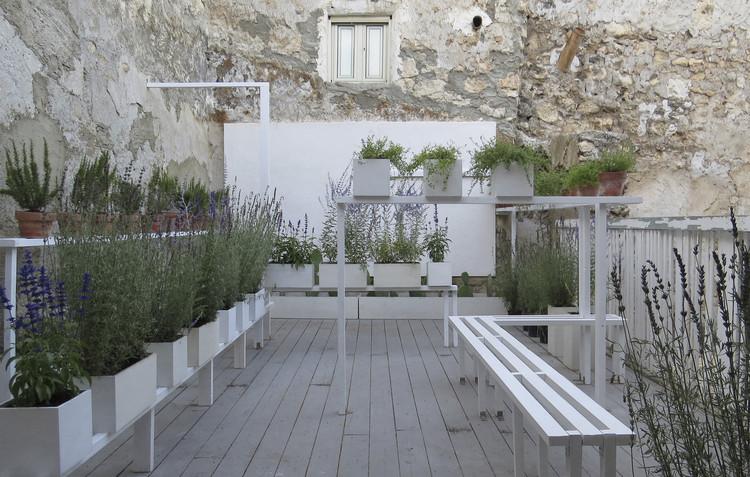 Jardín aromático - espacio polinizador / x-studio, Cortesía de x-studio : Ivan Juarez