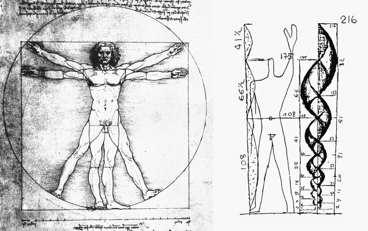 О роли и месте тела в архитектуре: модуль Ле Корбюзье 3