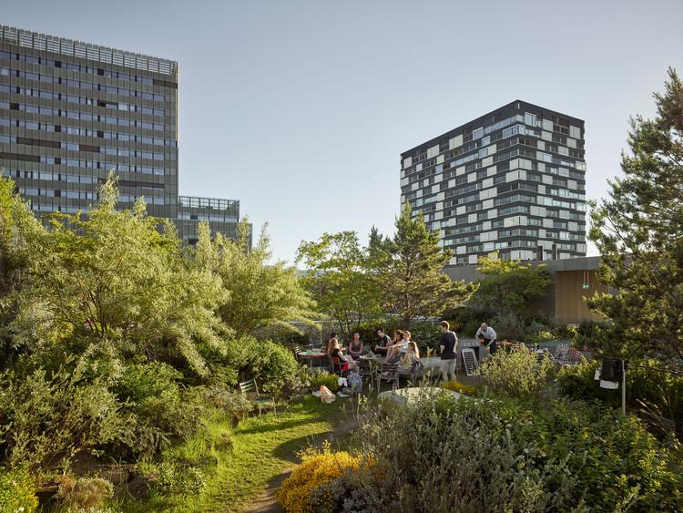 Toni Areal Roof Garden / Studio Vulkan Landscape Architecture, © Roland Bernath