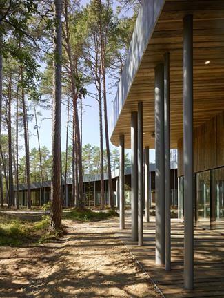 Arvo Pärt Centre. Vista exterior. Image © Roland Halbe
