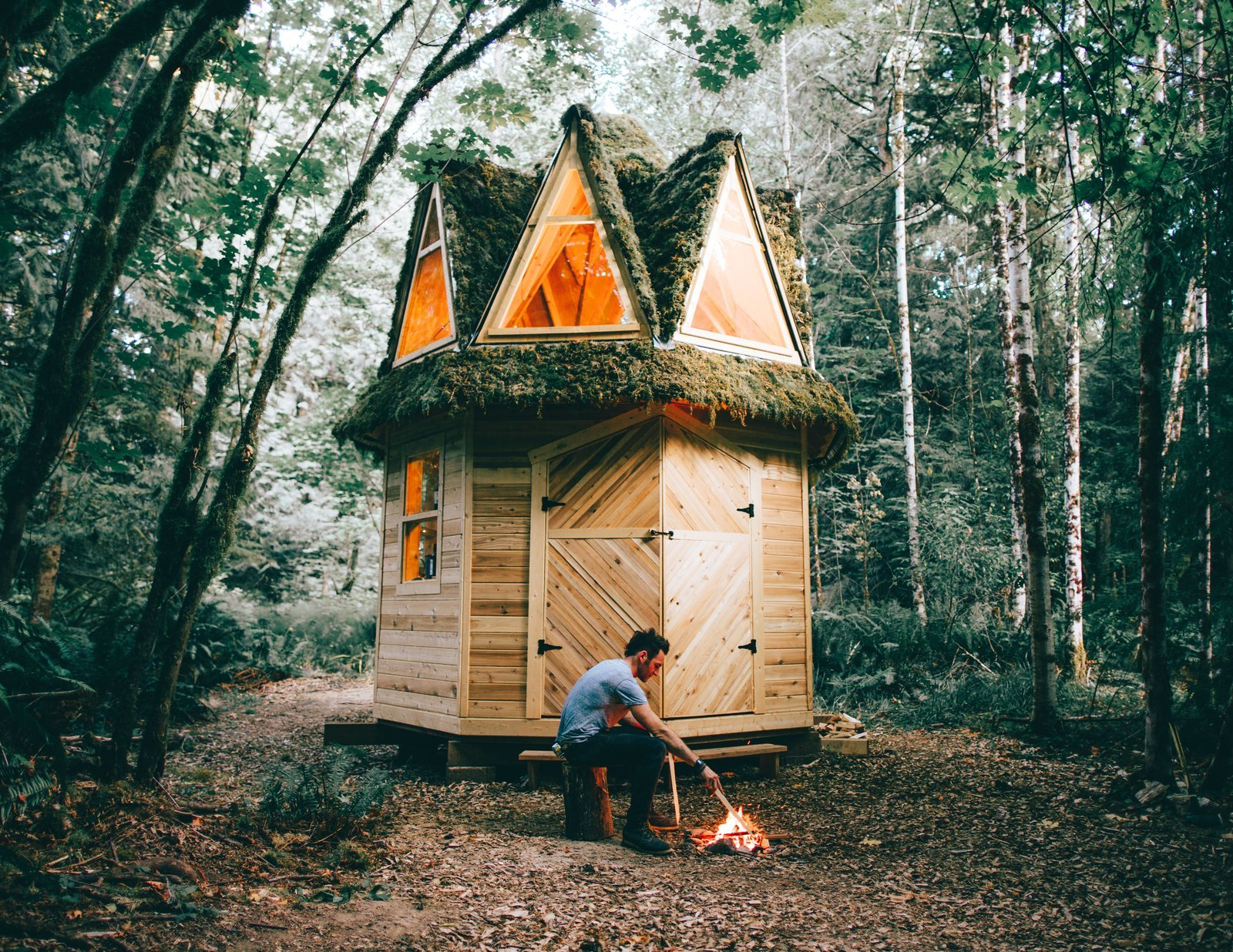 This Moss-Covered, Octagonal Micro-Cabin Combines Luxury and Rustic Aesthetic