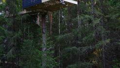 lesom / Sozonych