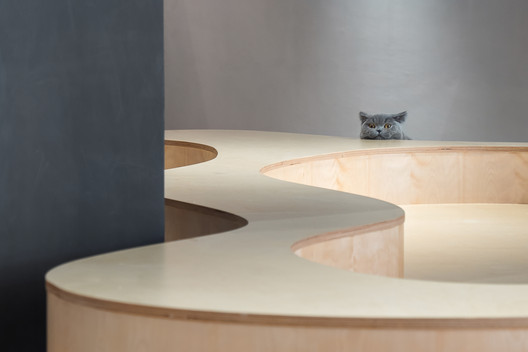Cat's perspective of the terrace. Image © Chao Zhang