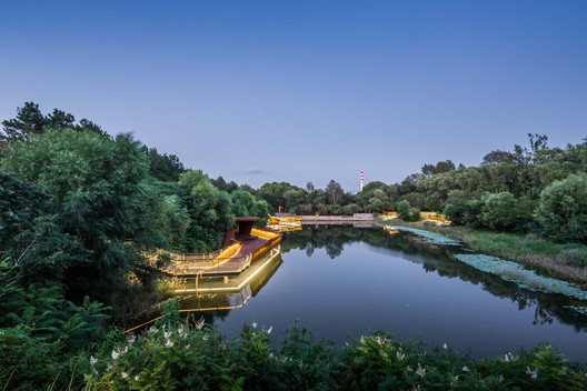 Recovery of A Natural Green Lung_Pond. Image © Xiu Wang