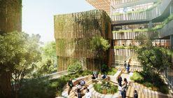 Universidade de Tecnologia de Sydney abrirá a primeira universidade indígena da Austrália