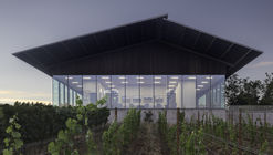 Furioso Vineyards / Waechter Architecture