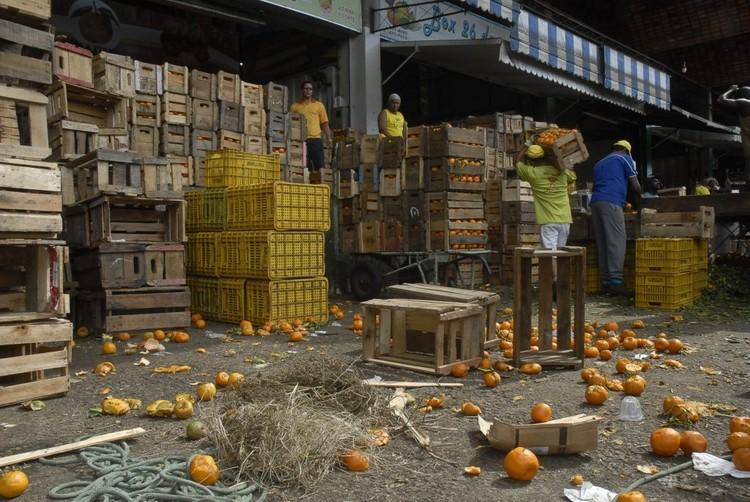 ONU pretende integrar políticas de alimentação ao planejamento urbano, Desperdício de alimentos preocupa a FAO. Foto: EBC, via ONU/FAO