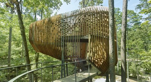 Casa del árbol de Evans en Garvan Woodland Gardens / modus studio
