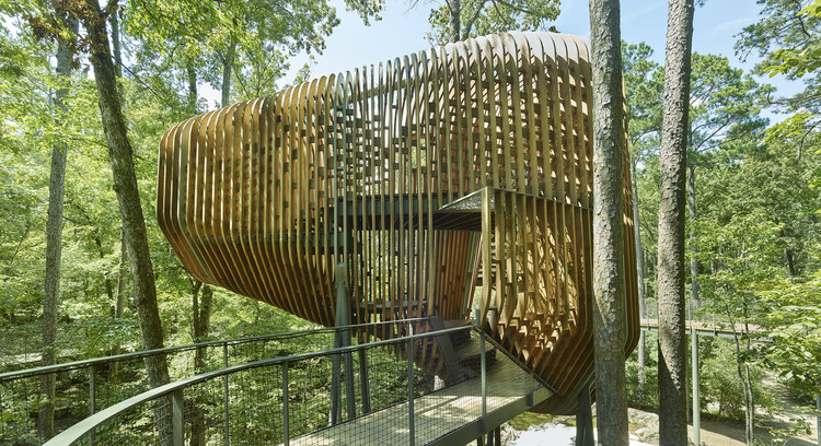 The Evans Tree House at Garvan Woodland Gardens / modus studio, © Timothy Hursley