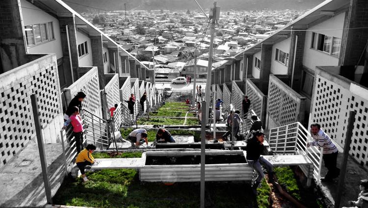 Ejemplos de patrones y códigos generadores en la vivienda social de Latinoamérica, Imagen editada por Fabian Dejtiar. Image Cortesía de Mi Parque