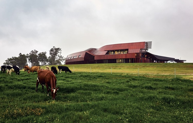 Bosske Reimagines the Australian Dairy Farm with a Robotic Creamery, The Creamery, Bannister Downs Dairy. Image © Peter Bennetts