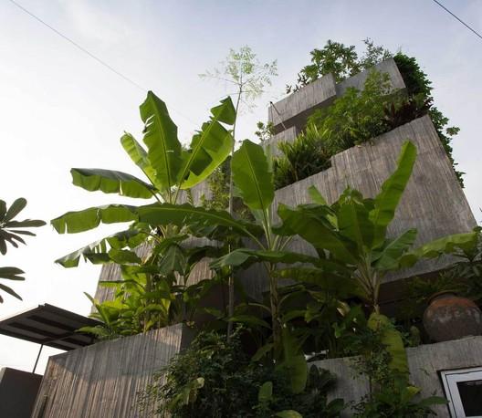 Planter Box House / Formzero. Image © Ameen Deen