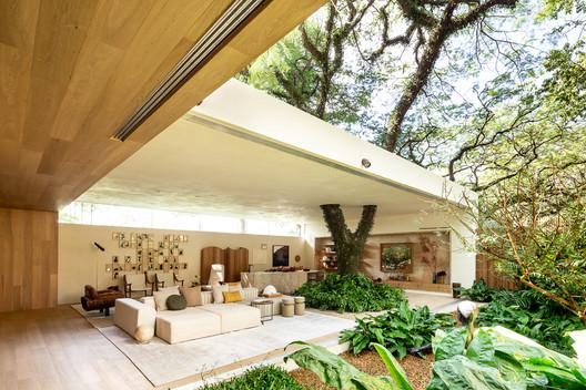 Casa del árbol / Suite Arquitetos