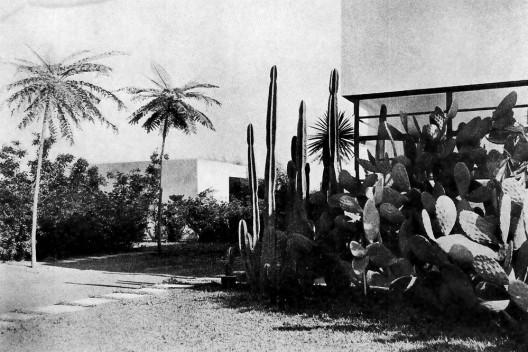 Os jardins de Mina Klabin Warchavchik: modernidade pública e privada, Casa da Rua Santa Cruz, jardim de Mina Klabin. Acervo Gregori Warchavchik